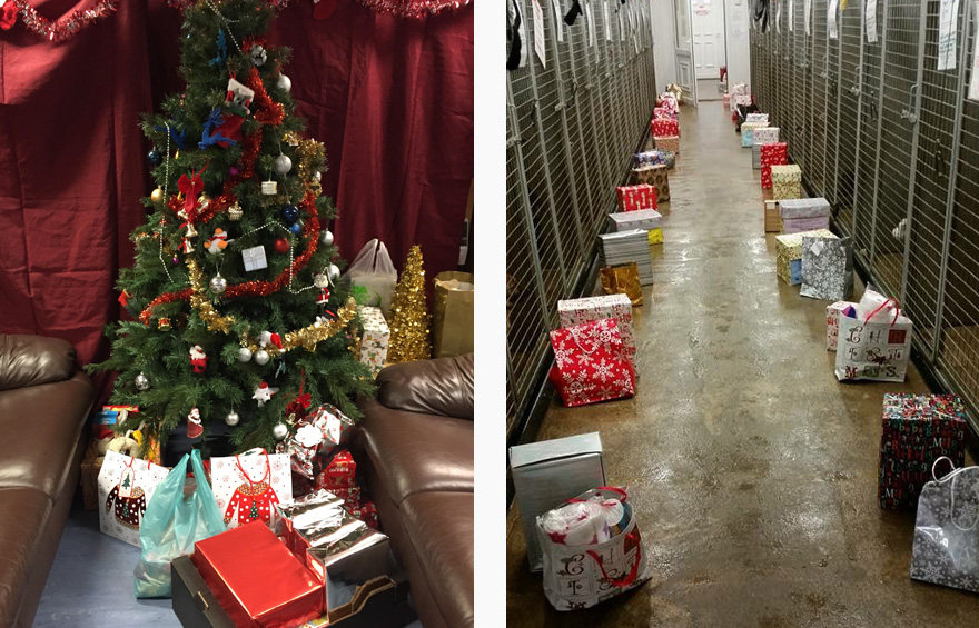 Secret Santa at Babbington Rescue